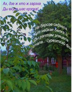 DSC04618---.jpg